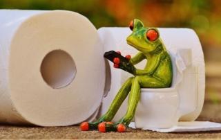 pooping-modern toilet-bathroom posture-squatting position